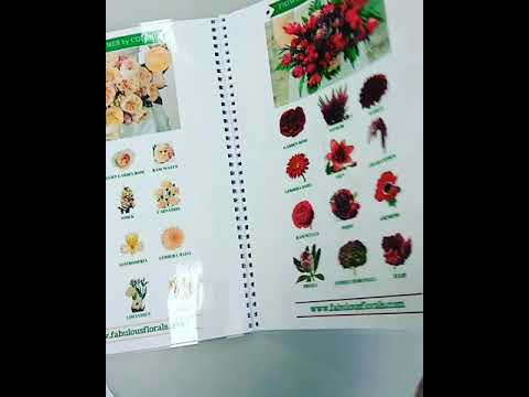 каталог с фото цветов