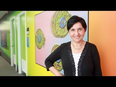 Dr. Banu Onaral, Faculty of the Year, Drexel Co-op Awards