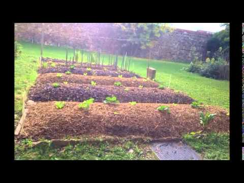 permaculture cr ation et volution d 39 une butte autofertile youtube