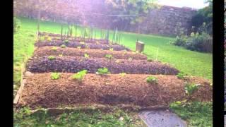 Repeat youtube video Permaculture : création et évolution d'une butte autofertile