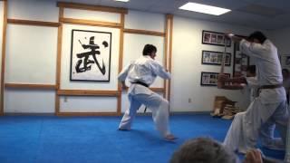 Yamaki Karate: Sensei Jun Watanabe Breaks Two Baseball Bats for Inhouse Demonstration