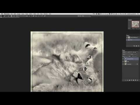 HOW to WOW! - Mastering the Creative Flow with Topaz