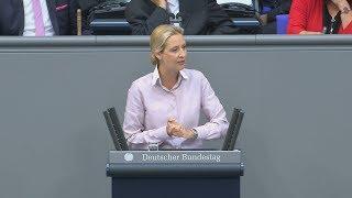 Bundestagsdebatte: Wolfgang Schäuble rügt Alice Weidel bei Generaldebatte im Bundestag