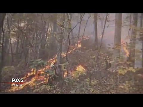 About 100 homes evacuated in North Carolina due to wildfire