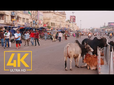 Everyday Life of Puri - 4K Travel Film - Incredible India - Cities of the World