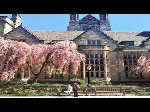 Yale University - a