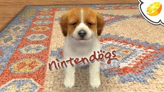 Nintendogs + Cats: Golden Retriever & New Friends | Citra Emulator Canary 451 (GPU Shaders) | 3DS