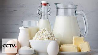 Вопросы и ответы: Какие молочные продукты покупать?