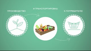 Инфографика: как правильно выбрать картонные коробки для овощей | Промо-ролик для Сельхозтара(Видео даст ответы на вопросы, которые интересуют каждого производителя: - как не потеряться среди многообр..., 2016-07-17T20:25:18.000Z)
