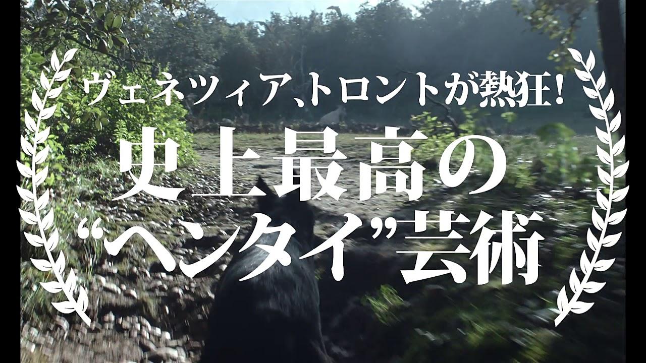『触手』予告編 ビデックスJPで配信中!