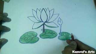 How to Draw a lotus. How to Draw a waterlily- কি ভাবে শাপলা আঁকবো।