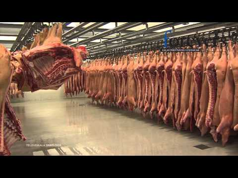 Корейка свиная в рассоле рецепт