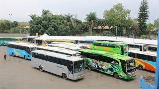 BUS-BUS MBOIS DI ARJOSARI..!!! Hunting Bus di Terminal Arjosari, Malang