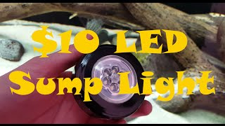 LED Sump/Stand Lighting for $10