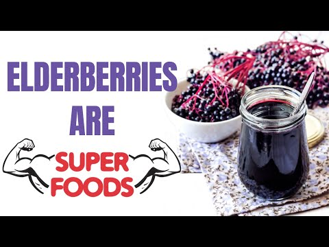 10 Amazing Health Benefits of Elderberry YOU NEED I Elderberry Benefits