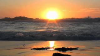 Poets of the Fall - Morning Tide   Subtitulado Español
