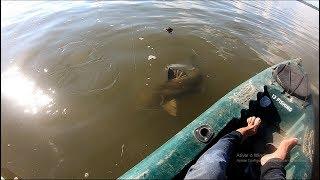 IMAGINE SE ISSO ACONTECESSE COM VOCÊ! Pescaria.