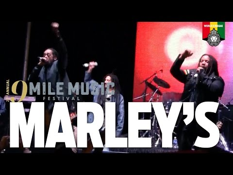 Stephen, Damian, Julian & Skip Marley  at 9 Mile Music Festival 2016