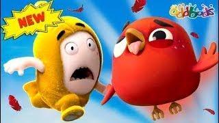 Oddbods | JEFF và ANGRY BIRD | Phim Hoạt Hình Vui Nhộn Cho Trẻ Em