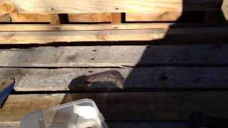 Minisode 14 - Perfectly Free Potting Bench