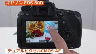 キヤノン デジタル一眼レフ EOS 80D (カメラのキタムラ動画_Canon)