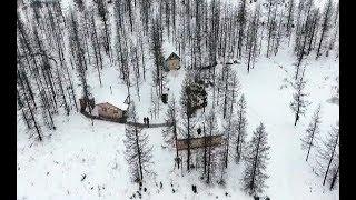 В единственном на Ямале природном парке Полярно-Уральский появились нетипичные для Севера животные