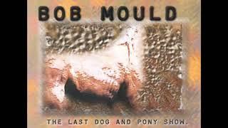 Bob Mould - Reflecting Pool