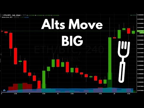 Post Bitcoin Gold Fork Movements - Analyzing The Craziness