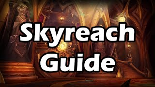 How to Tank for Dummies - Skyreach