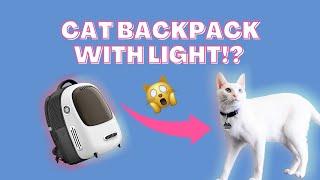 Khaleesi Tries a Cat Backpack
