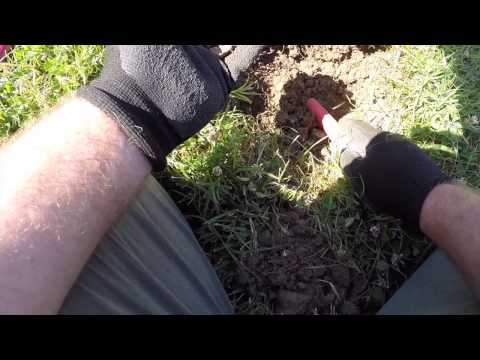 Metal Detecting and stuff with Matt Episode 45, Hillcrest Park. A little long.