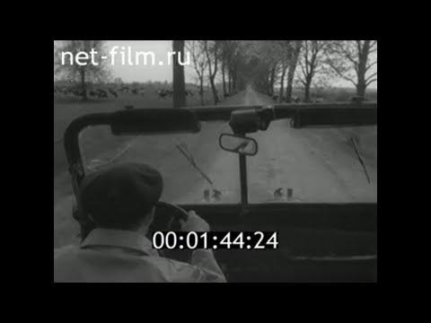 1960г. п. Ермаково колхоз имени Горького Правдинский район Калининградская обл
