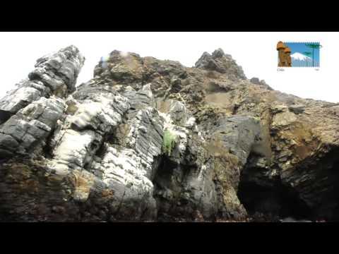 Isla Damas - Chile 365 - turismo en Chile