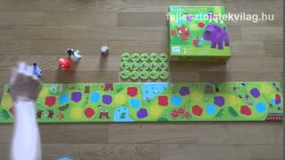 Djeco, Little Circuit játékszabály, lépegetős társasjáték a színek mentén, 2,5-5 év