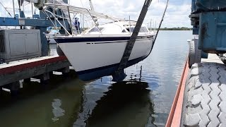 1. We Just Bought a Boat - Sailing Vessel Somnium