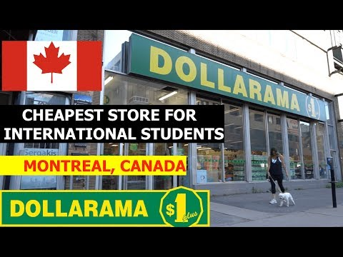 Dollarama, The Cheapest Store For International Students In Canada