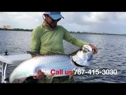 Backwater Tarpon Fishing In Puerto Rico