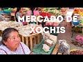 Video de Xochistlahuaca