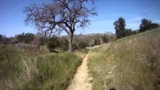 Great single track run Las Virgenes Open Space Preserve/Amanson Ranch