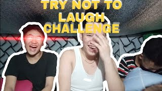 Try Not To Laugh Challenge |Romnel Cruz Mallari