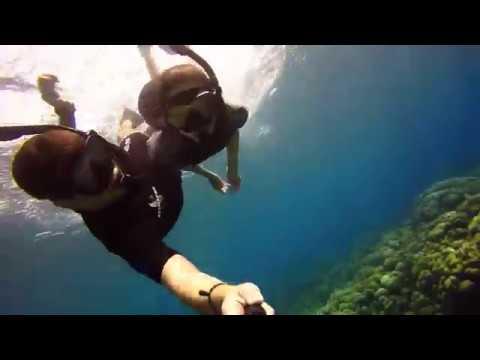 Guadeloupe Pigeon Island Snorkeling