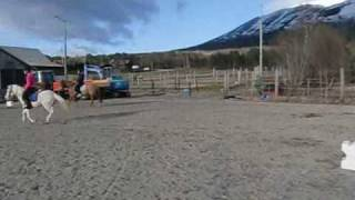 Sundance Pippi er for salg. Super Barne ponny.