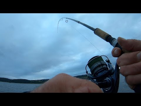 Clyde Estuary 130818 1
