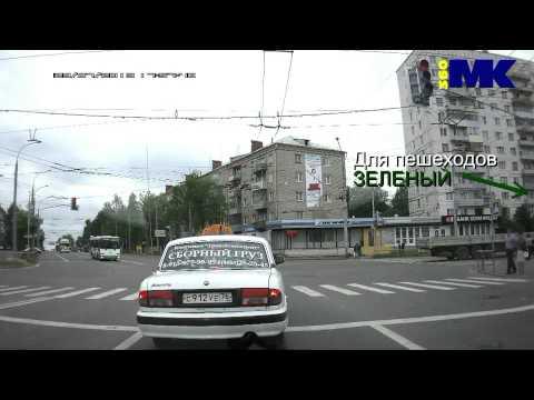 Даже друзья наши меньшие соблюдают ПДД. Рыбинск.