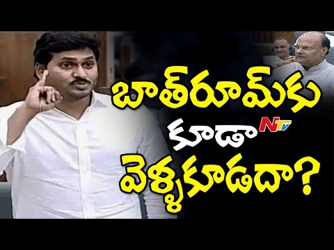 Funny Comments Between YS Jagan & Yanamala Ramakrishnudu || Assembly || NTV