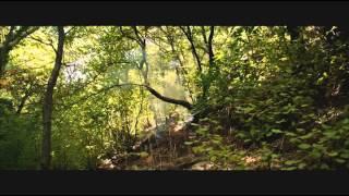 Jin - 2013 Kürtçe Film