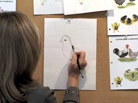 How To Draw Chick By Jan Brett