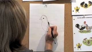 How to Draw a Chick by Jan Brett