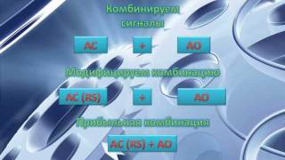 12 лет ПРИБЫЛЬНЫЙ сигнал AC(RS) + AO