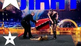 Представление с енотами - Україна має талант-6 - Кастинг в Донецке